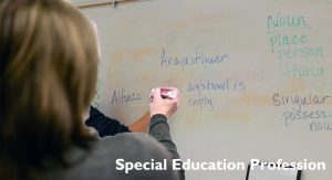 An Inside Appear in the Special Education Profession