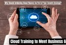 Why Should Achieving Cloud Fluency be Part of Your Growth Strategy?